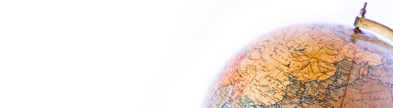 シンシアが提供する事業サービスの特徴